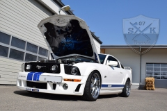 Ford-Mustang-Flames-Airbrush
