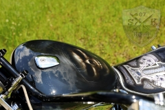 Airbrush-Skull-Shadow-Bike-Chromy1
