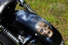 Airbrush-Skull-Shadow-Bike-Chromy3