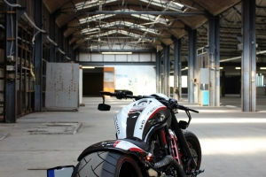 Barracuda Harley Davidson V-Rod