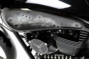 Best Bagger 2013 - Viva la Vida Bike