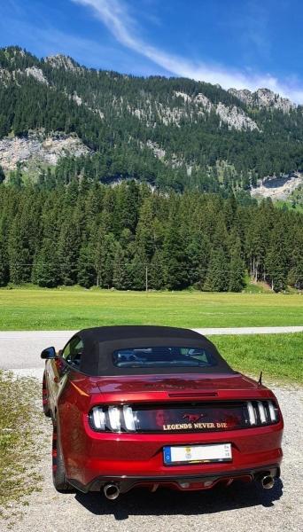 Airbrush-Mustang-Legends2020_3