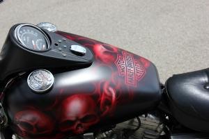 Harley Davidson Candy Red Fire Skulls