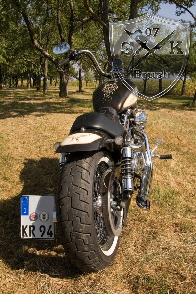 bmw-pyritbraun-lack-harley-davidson-creme-pinstriping-airbrush-custompaint-1