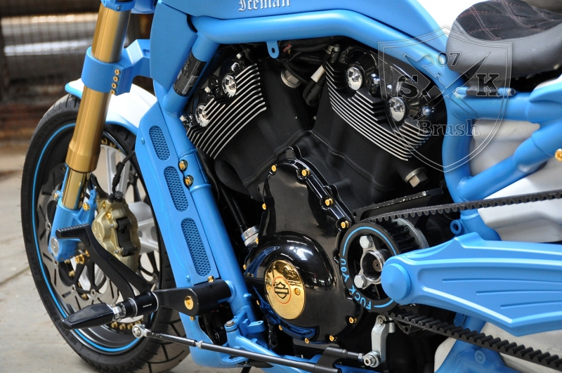 Harley-Davidson-V-Rod-Custompaint-Iceman6