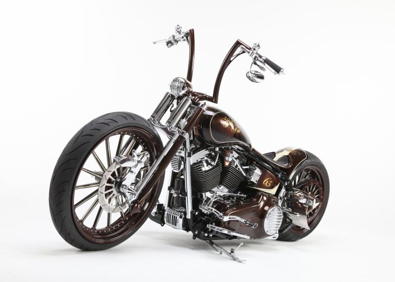 sugarbrown-harley-davidson-sixty-five-custompaint-custombike-5