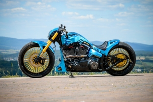 ILEKTRA Harley Davidson