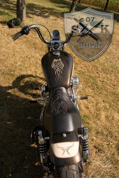 pinstriping-linierung-bike-pyritbraun-bmw-lack-2