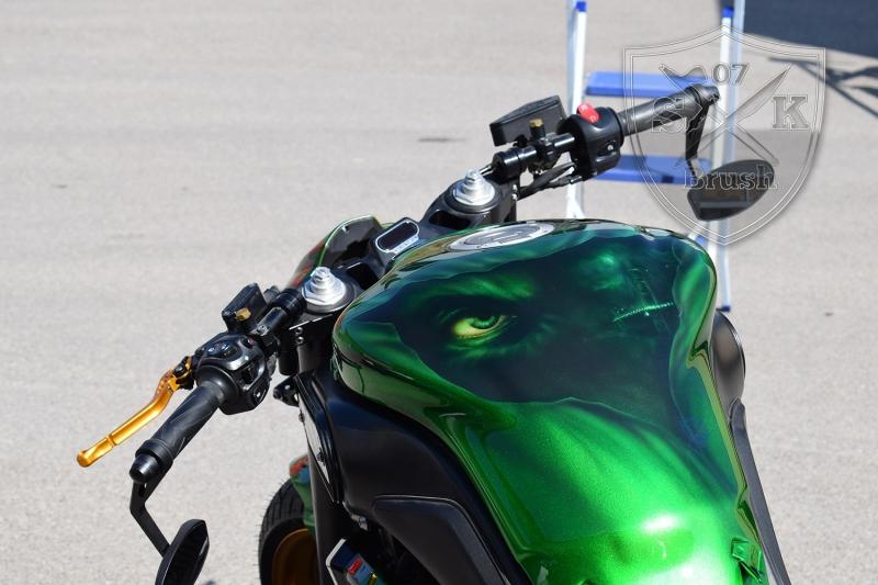 Arne-Yamaha-MT-01-GREEN-FALLOUT5